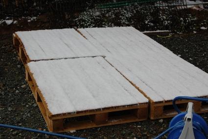 雪の写真2